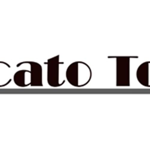 logo mercato totale